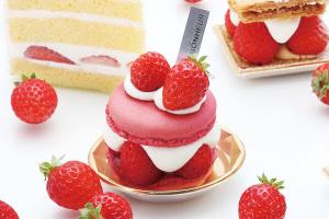 【進行中】安城のケーキ屋パティスリーしあわせのえきさん、miniチラシ公開!_vol.01イメージ