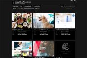 WEBデザインまとめサイトに載りました!_aoはり治療院プロジェクトvol.17