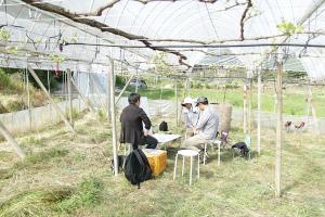 春風の中で、屋外プレゼンテーション_橘萄園プロジェクトイメージ