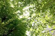 猛暑の中で撮影_Y-Styleプロジェクトvol.13