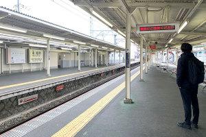 大阪出張と、お土産の太郎サブレイメージ