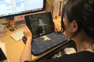 スタッフサワヤマのiPadイメージ