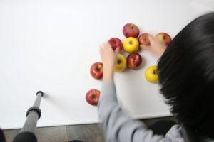 野菜のとリンゴの撮影会イメージ