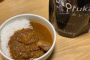 発売したばかりのスパイスカレーを食す!_etocatoプロジェクト