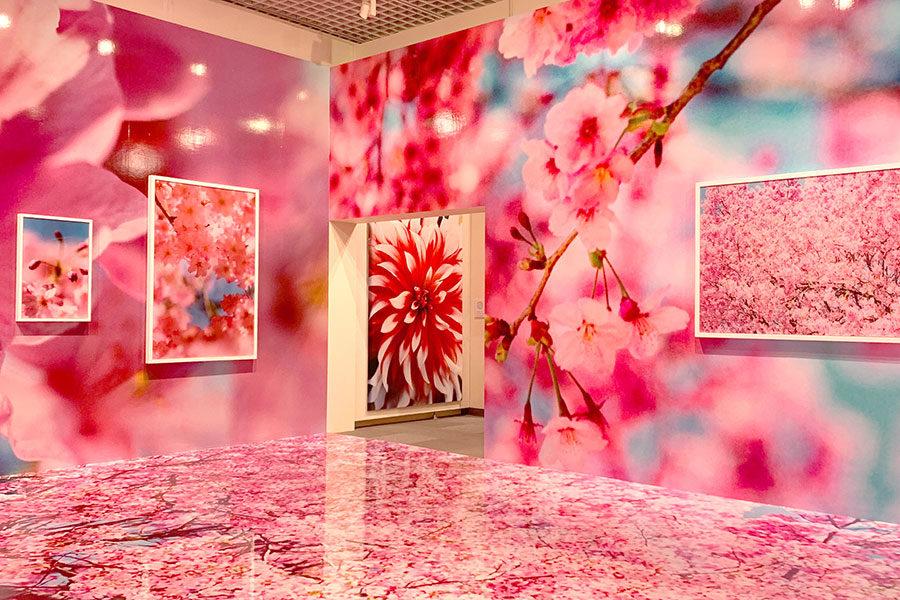 スタッフの休日 松坂屋名古屋で開催中の蜷川実花展に行ってきました!メインイメージ