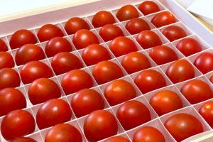 お取り寄せの勉強〜OSMICトマトが届きました!イメージ