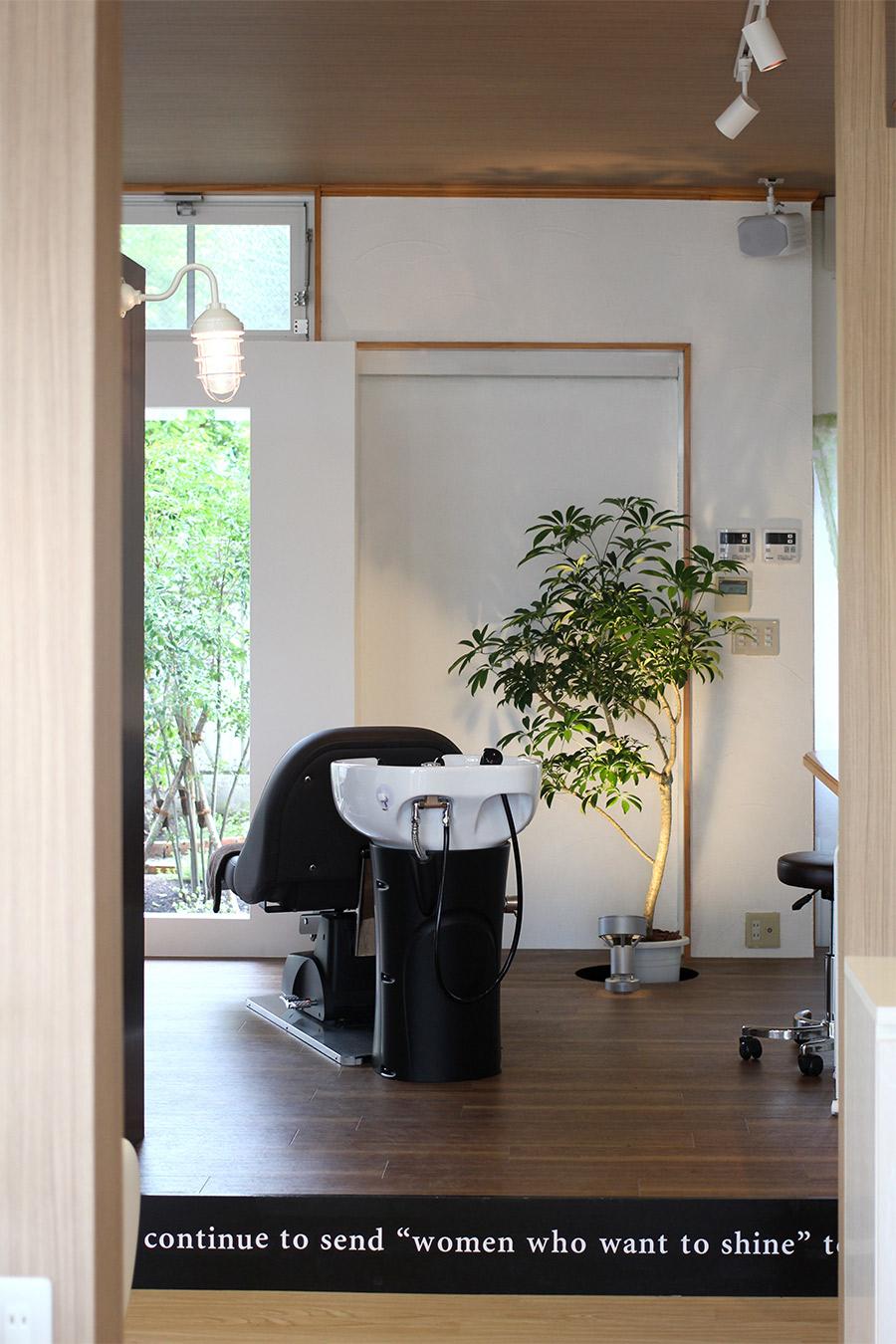 美容室の植物