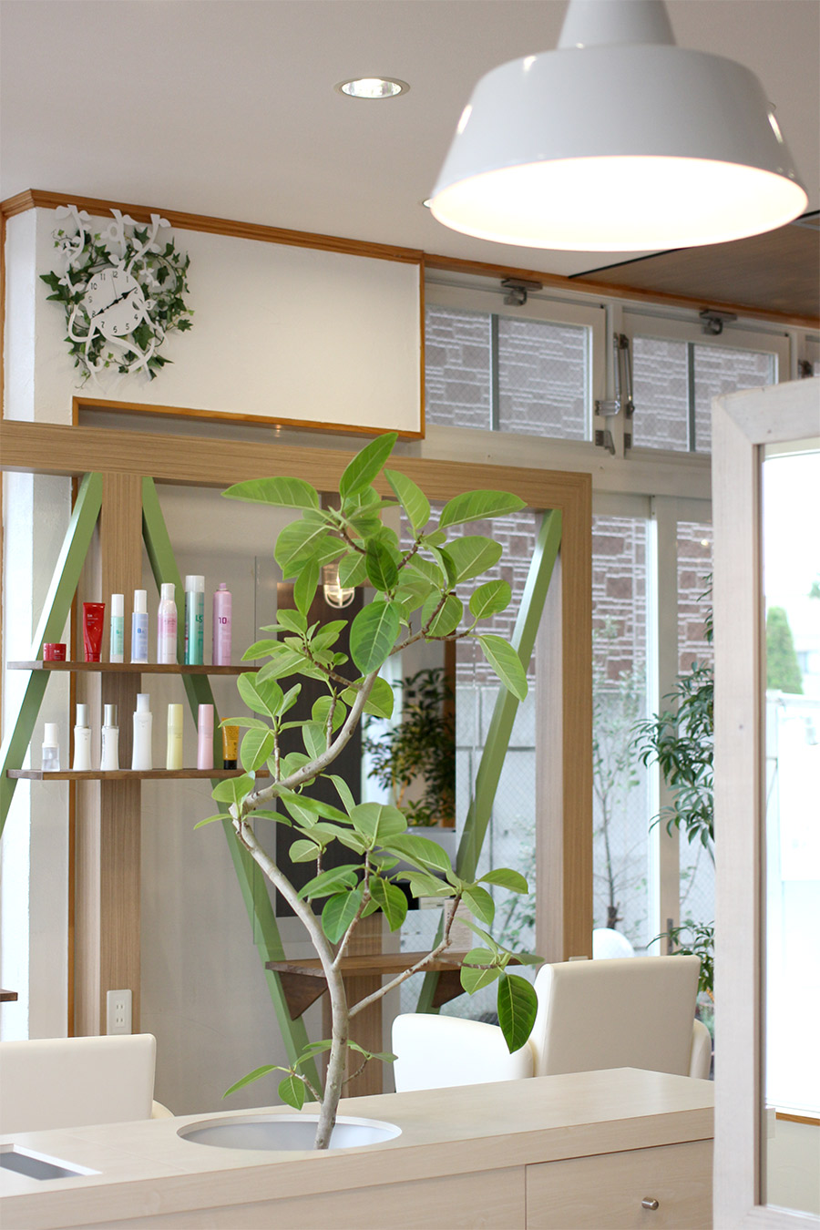 美容室のグリーン家具