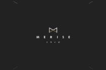 事業のホームページデザイン_名古屋市 株式会社MERISE(株式会社ミライズ)サムネイル